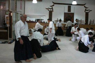 aikido2011-051