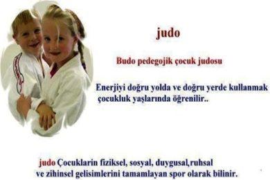 judo cocuk